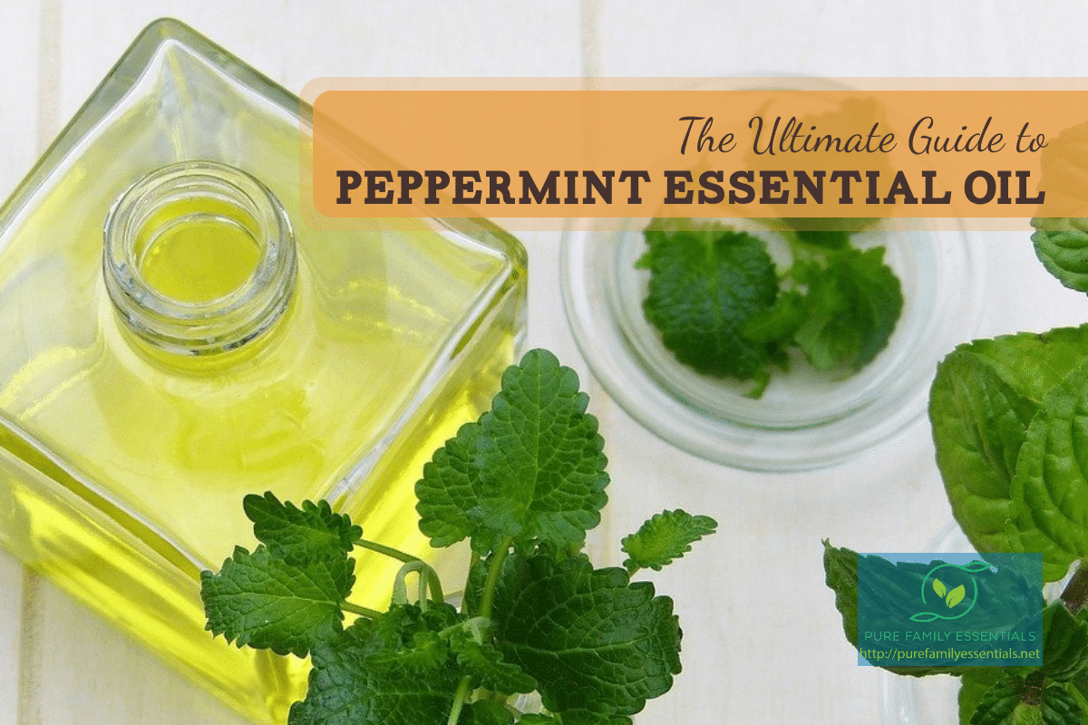 Peppermint Essential Oil feature